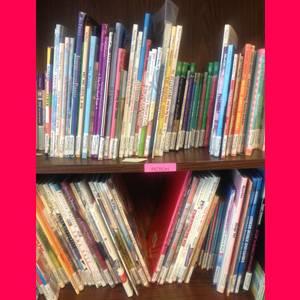 Blog-Bookshelf