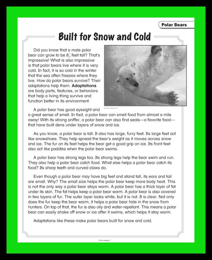 A Polar Bear Palooza The Mailbox Blog